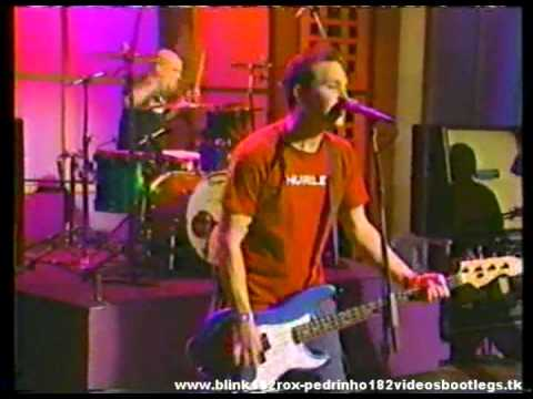 Клипы - Blink-182  What's My Age Again Live 1999